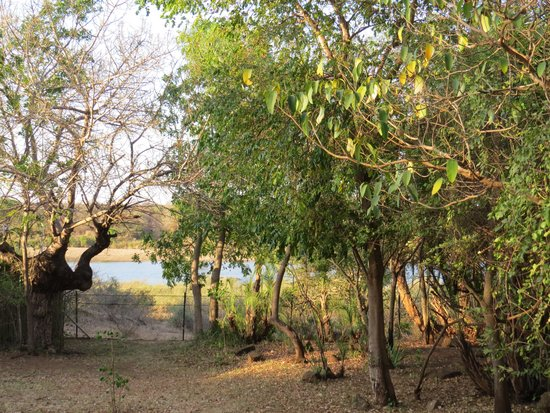 写真Lower Sabie Restcamp枚