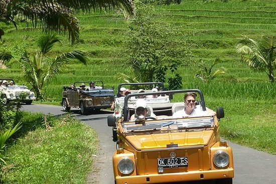 ‪Bali Safari Tours - Day Tours‬