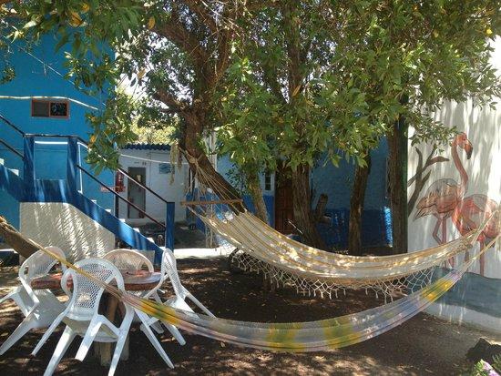 Hostal La Jungla: nice garden
