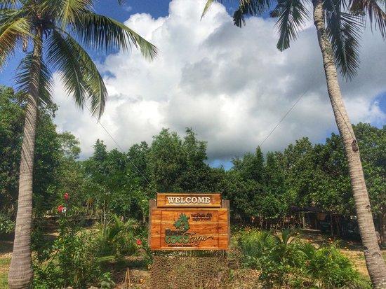 Bohol Coco Farm: Farm entrance.