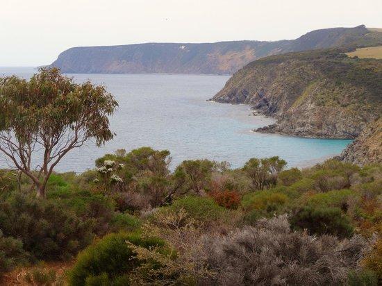 Cape Borda Lightstation: north coast