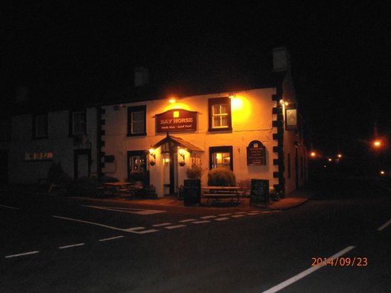 The Bay Horse At Night