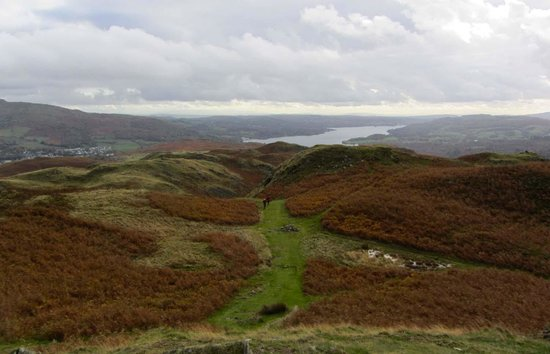 Loughrigg Fell: towards Windermere