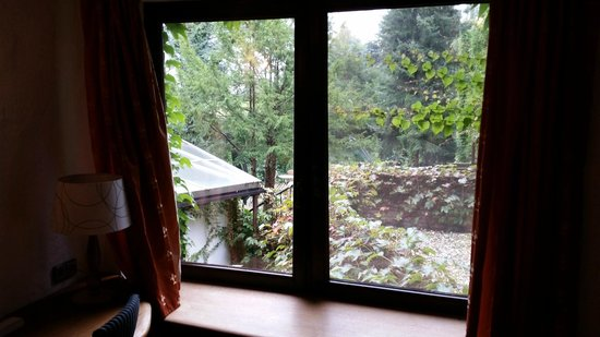 Hotel Land Gut Hohne: Outside window