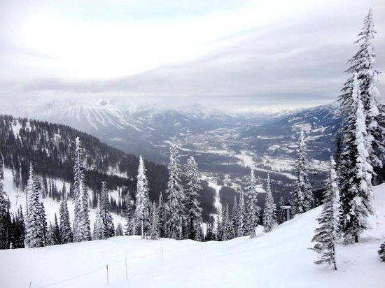 Fernie Alpine Resort: Fresh Powder