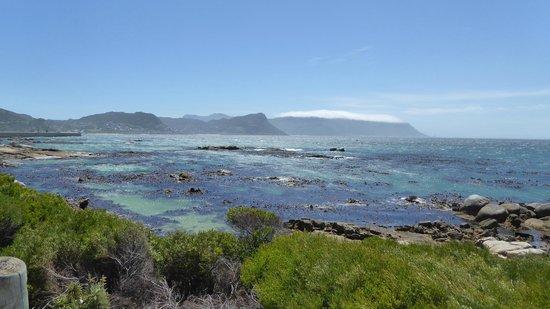 Percy Tours Day Tours: Views down the coast