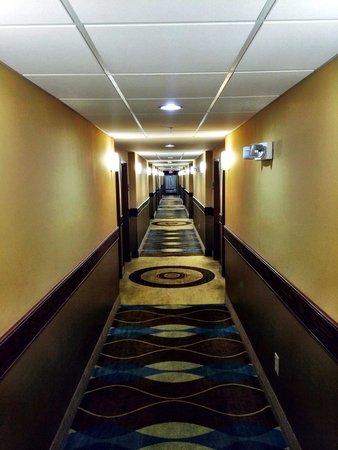 Holiday Inn Express Hotel & Suites Foley: Hallway