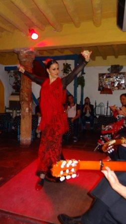 Flamenco Los Chatos Ana Maria : The star of the show