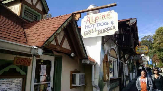 alpine hot dog and grill burger