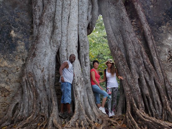 Thomas Tours & Safaris - Private Day Tours: Rovine di Gede