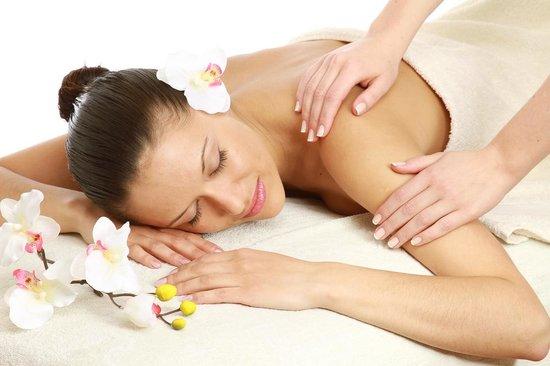 reve nature salon massage spa saint germain en laye .