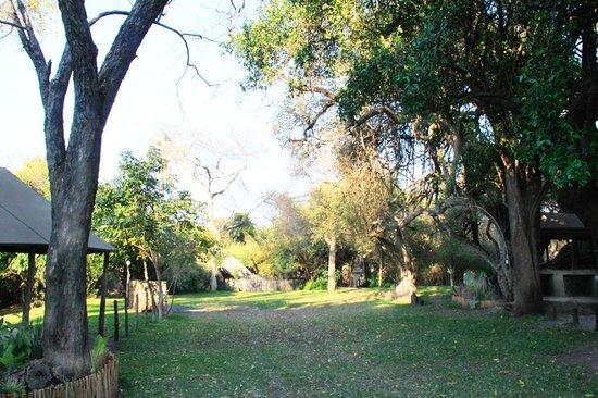 Kubu Cabins: General view of campsite