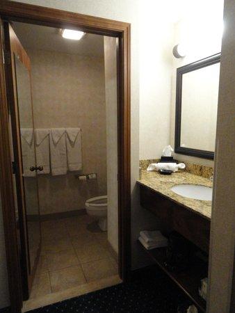 Quality Inn Auburn Hills: Bathroom
