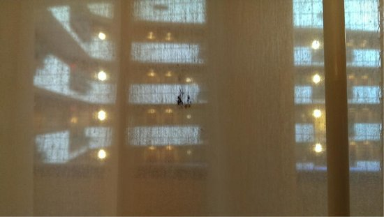 Embassy Suites by Hilton East Peoria - Hotel & RiverFront Conf Center: Stain on sheer curtain