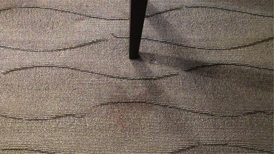 Embassy Suites by Hilton East Peoria - Hotel & RiverFront Conf Center: Carpet Stain