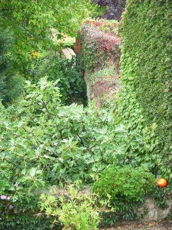 Les Jardins de Lois: B&B grounds