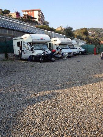 Area Camper Il Pozzo: Zona vivaio