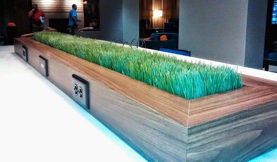 كورتيارد باي ماريوت تيمبي: Artificial Turf, Bistro Infield--artificial grass and outlets! :)