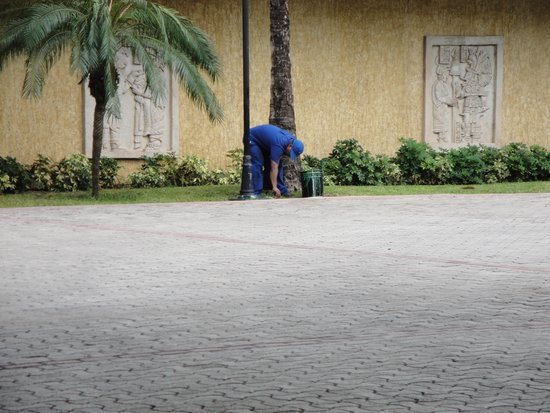Grand Palladium Riviera Resort & Spa : Painting the grass by Kantenah lobby