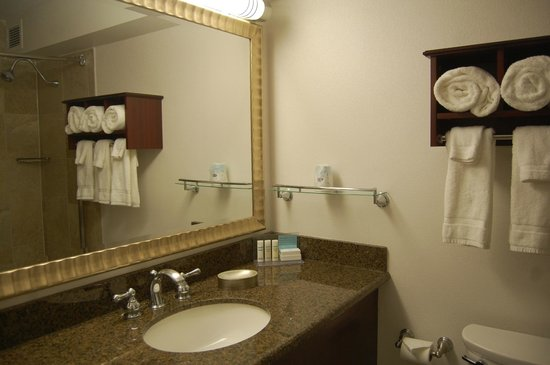 Hampton Inn & Suites Chicago - Downtown: Toilette