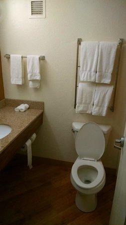 La Quinta Inn & Suites Danbury : The bathroom