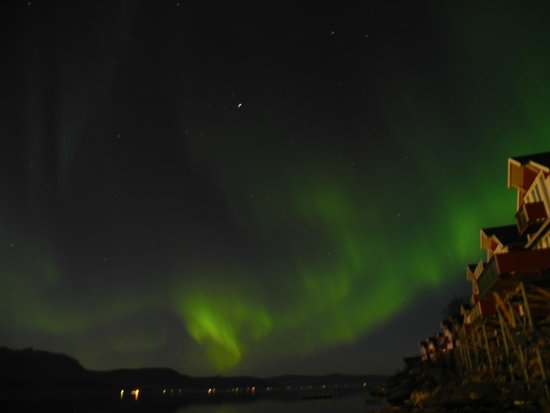 Malangen Resort: Northern lights from the parking lot
