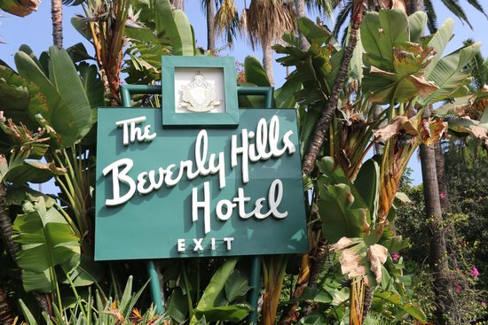 grounds picture of the beverly hills hotel beverly hills rh tripadvisor co nz
