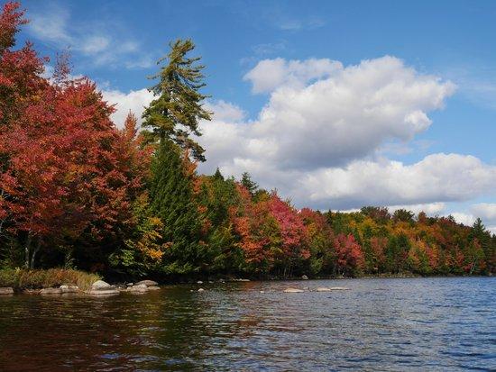 Packbasket Adventures: On Cranberry Lake