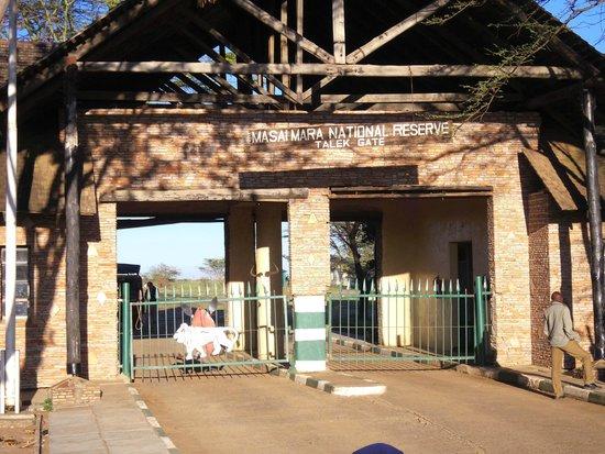 Crocodile Camp Masai Mara