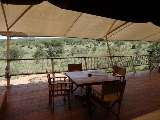 Mara Bushtops: Room with a View