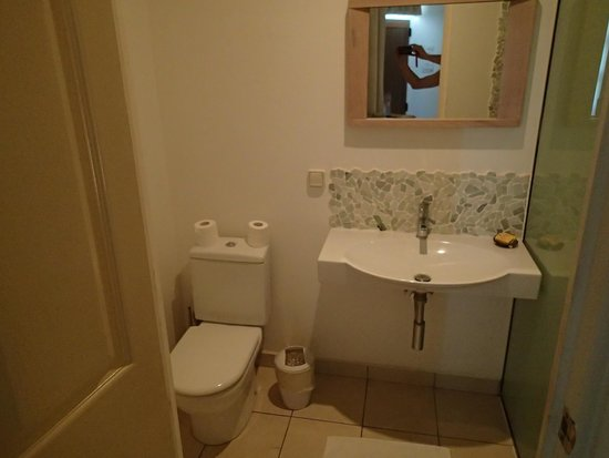 Fare Suisse Tahiti : Bathroom in the room