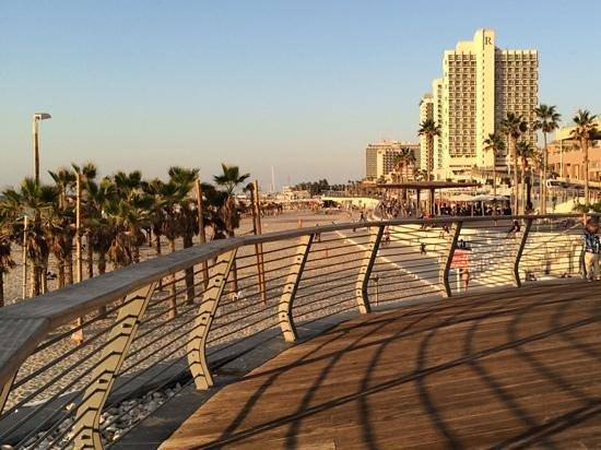 Frishman Beach : Hotels alongside long stretches of a sandy beach