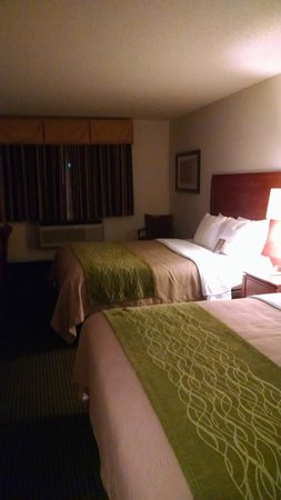 Quality Inn Denver Westminster: Room