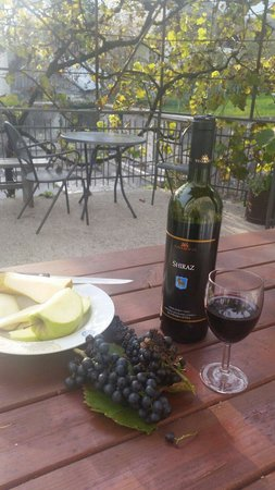 Apartments Dana Bovec: The liitle alfresco area outside the Appartment Dana  rooms Freshly picked grapes haging above a