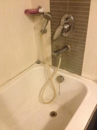 Hotel Southern: shower