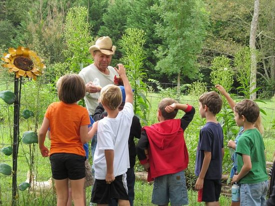 Hop'n Blueberry Farm: talking with the kids