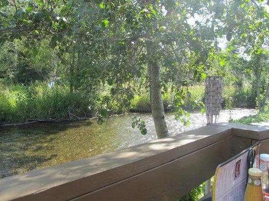 New Peanut Farm: sitting by the river