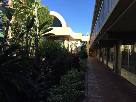 Clarion Hotel & Conference Center: Corredor do hotel bem arborizado