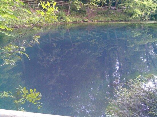 Planet Scuba Mexico: Cenote der Schwäbischen Alb