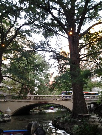 Rio San Antonio Cruises : Scenery Along the River Walk