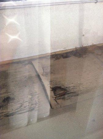 Laguna Beach Lodge: Ledge outside my window - rotting wood