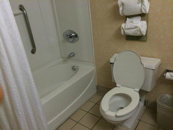 Ramada Plaza Laredo: Bathroom