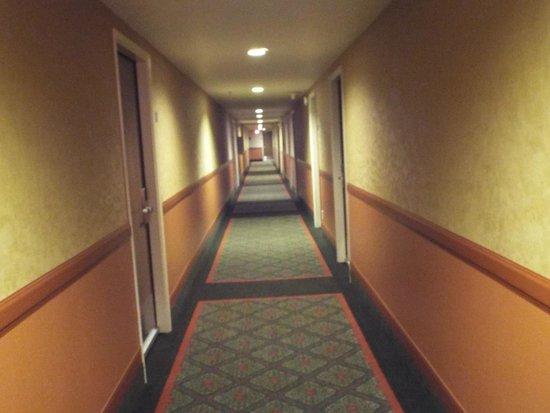 Oxford Suites Lancaster: Hallway