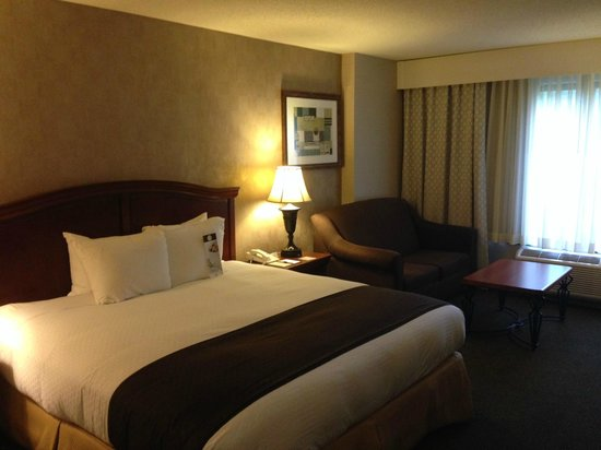 DoubleTree by Hilton Hotel Milwaukee - Brookfield: King room with sofa