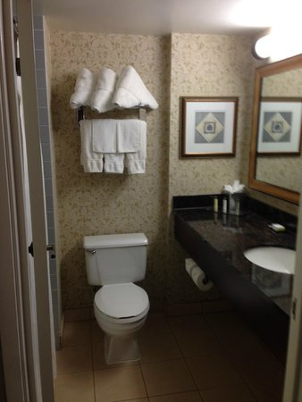 DoubleTree by Hilton Hotel Milwaukee - Brookfield: Bathroom