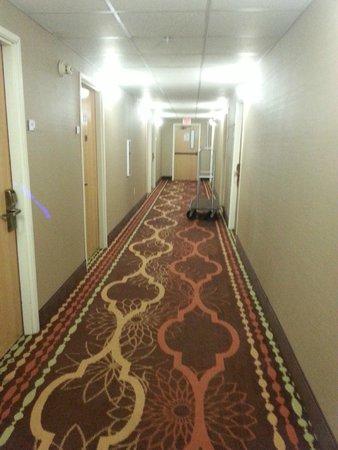 Quality Inn & Suites: hallway