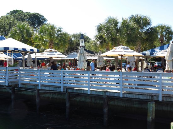 Salty Dog Cafe Hilton Head Reviews