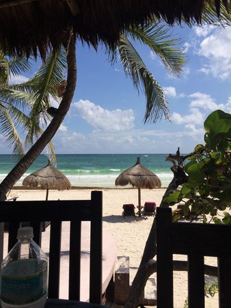 La Zebra Beach Restaurant and Tequila Bar: The view from our table
