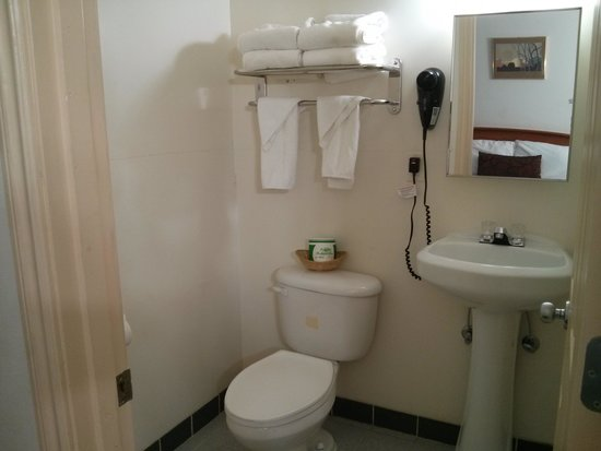 Palms Motel: Bathroom