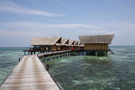 Adaaran Prestige Ocean Villas: Ocean Villas